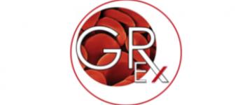 Logo - Labex GR-Ex