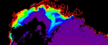 Figure 1 : Concentrations de surface de la Chlorophylle a observées par images satellite en Novembre 2011 durant la campagne CARBORHONE 2.