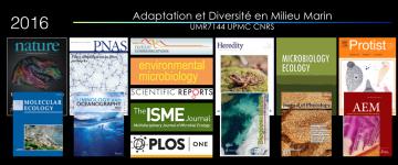 Panorama des publications 2016 du laboratoire Adaptation et Diversité en Milieu Marin
