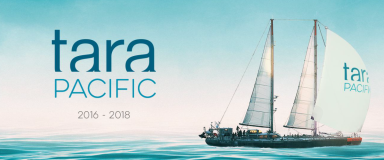 Tara Pacific 2016-2018